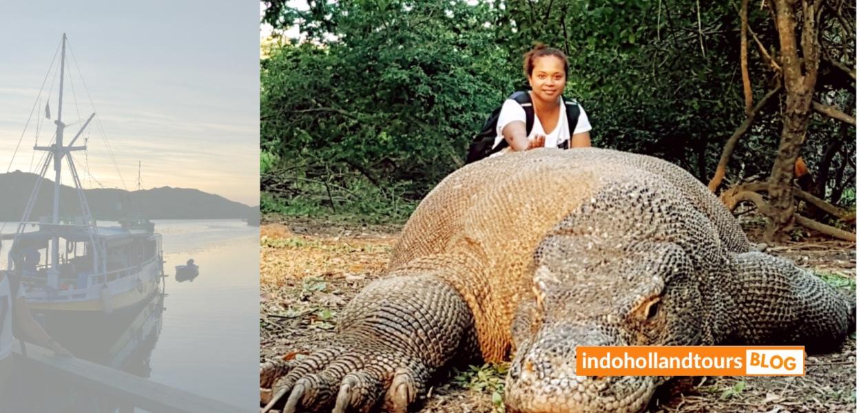 Komodo Flores Indonesia