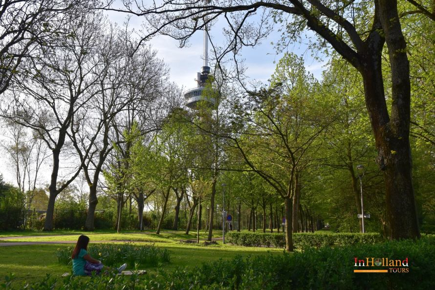 Taman disekitar Euromast - IndoHolland Tours