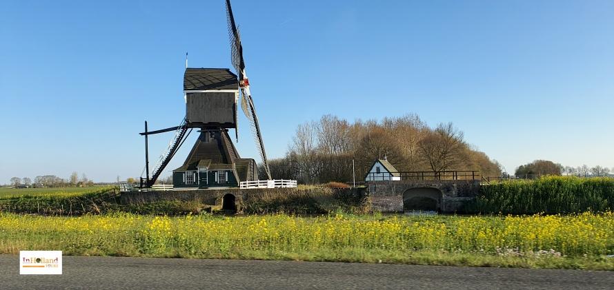 Zeeland Belanda