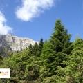 Desa Agnanta Tzoumerka, Yunani Eropa