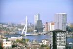 Mau survei atau jalan ke Rotterdam Belanda