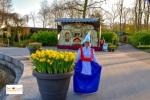 taman bunga tulip di Lisse Keukenhof Belanda Eropa