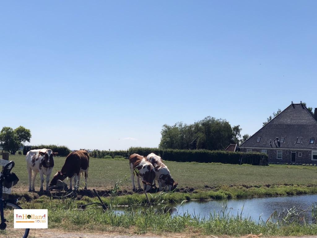 Volendam Holland, Europe