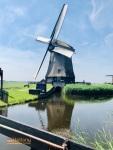 Schermerhorn Belanda